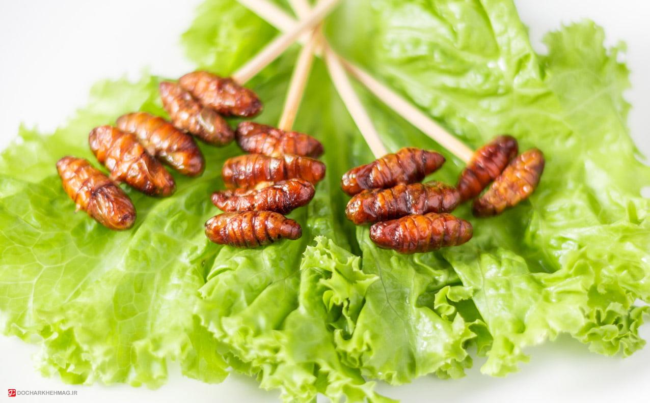 خوردن حشرات در تایلند Eating insects in Thailand